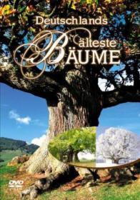 Deutschlands älteste Bäume (2007)
