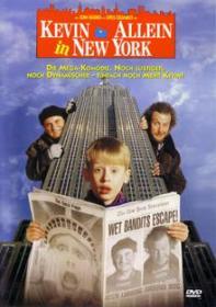 Kevin 2 - Allein in New York (1992) [Gebraucht - Zustand (Sehr Gut)]