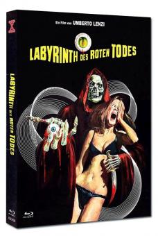 Labyrinth des roten Todes (Limited Mediabook, Blu-ray+DVD, Cover A) (1975) [FSK 18] [Blu-ray]